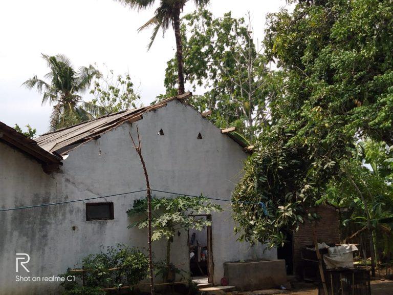 Angin kencang sempat memporak-porandakan kawasan Desa Tayu wetan